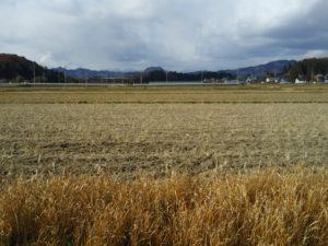 冬晴れの豊郷まほろばの道①古墳時代の遺跡を訪ねて