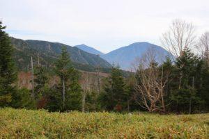 錫ヶ岳登山道から男体山