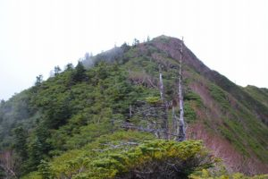 栃木百名山第42座:霧降からの女峰山は厳しい山行