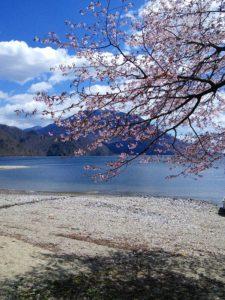 栃木百名山第47座黒檜岳:千手ヶ浜からアカヤシオとシャクナゲを愛でながら