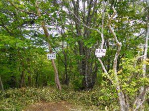 栃木百名山第11座弥太郎山:日留賀岳と大佐飛山を眺めに