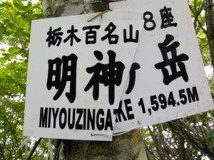 栃木百名山第20座明神ヶ岳:湯西川の奥深い山はギンリョウソウ咲くも眺望なし