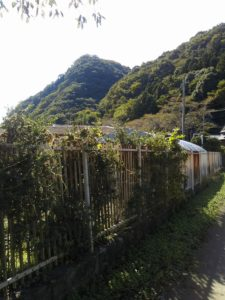 栃木百名山第77座鎌倉山:那珂川に沿って立つ雲海の山