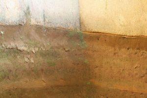 栃木百名山第83座谷倉山:星野遺跡地層探検館とともに