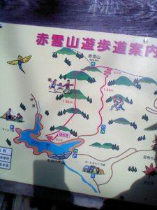 栃木百名山第100座赤雪山:沢筋の往路は倒木の道