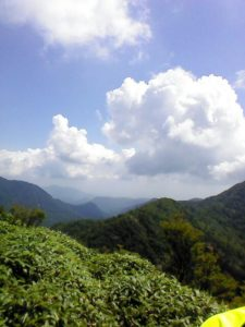 栃木百名山第15座鶏頂山:元鶏頂山スキー場から笹原を抜けて