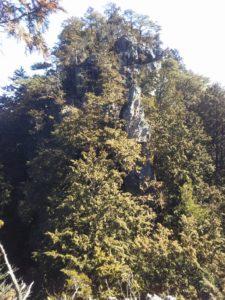 栃木の山:岩山の次石山から城跡の小倉山縦走