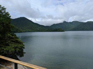 栃木百名山社山:霧の中ハクサンシャクナゲに会いに