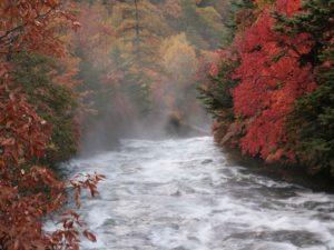 栃木百名山を楽しもう!:絶景紅葉の山②竜頭の滝と高山