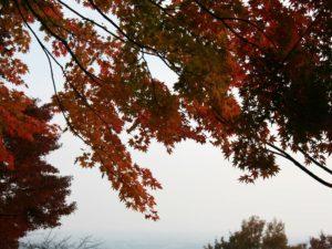 栃木百名山を楽しもう!:大平山の紅葉