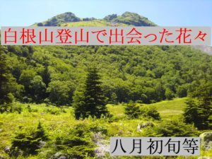 登山関連動画集
