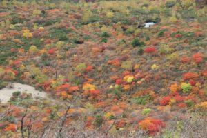 栃木百名山:15分だけ霧が晴れた紅葉全開の那須岳
