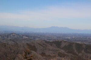 栃木百名山:ミツマタ咲き始めた鶏足山2021
